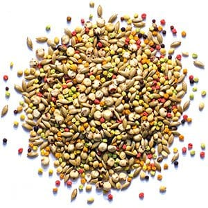 Fruit and Seed Blended Pellets for Parakeets and Budgies