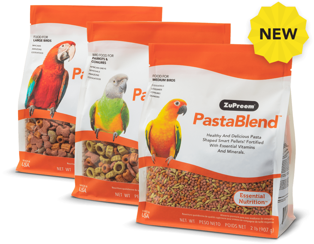 Pasta-shaped Bird Food