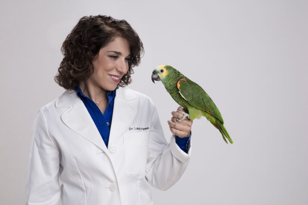 How To Give Your Pet Bird Medications